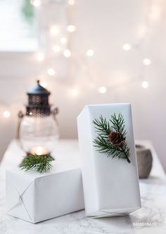 plain white paper w/ evergreen sprig & pine cone