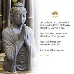 -Buddha. Again I'm not religious but I do like the teachings of Buddhism about being a good person. If my boys wanted to study a religion I would go with this. It's not about following a god and what he says and that's why I agree with it.