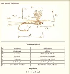 Fly Tying Proportions: Rosen's Formulas for Success