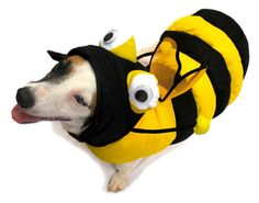 Bumble Bee 3 D Large Dog Costumes