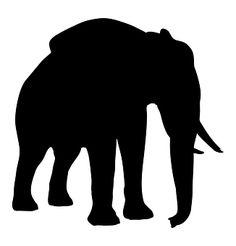 Sylwetka, Słoń, Zwierząt, Przyrody