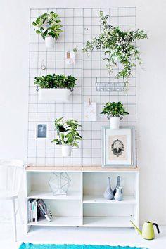 Dica de organização para as plantinhas – Faça você mesmo – Jardim vertical