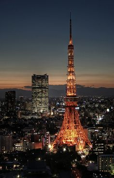 View from Hamamatsucho at sunset to the Mori Tower and Tokyo Tower in the Tokyo skyline.Image provided by Getty Images. Beautiful Places In Japan, Wonderful Places, Tokyo Skyline, Tokyo Night, Tokyo Tower, Dream City, City Landscape, Night City, Tokyo Japan