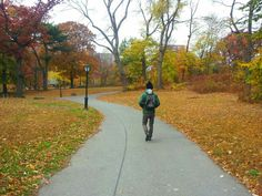 Central park NYC autunno