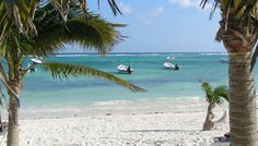 Missing Akumal, Mexico.  I'll be back one day!