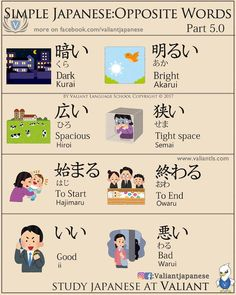 Opposite Words in Japanese 🌷💁‍♂️ . Learn Japanese Words, How To Speak Japanese, Japanese Phrases, Study Japanese, Japanese Kanji, Japanese Culture, Japanese Language Proficiency Test, Japanese Language Learning, Learning Japanese
