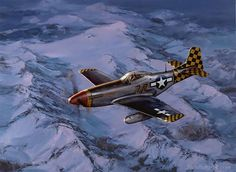 Mustang - The Checkertail Clan by Jack Fellows