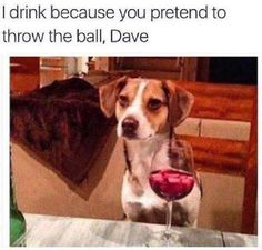 I drink because you pretend to throw the ball, Dave.