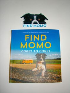 Find Momo Coast to Coast: A Photography Book Andrew Knapp with Sticker Paperback in Books, Nonfiction | eBay