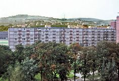 Račko, park 1968 1 Sken z diáku. Bratislava, Park, Parks