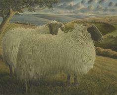 Blackface Sheep JAMES LYNCH