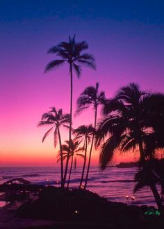 "coiour-my-world: ""Kauai sunset, Hawaii """