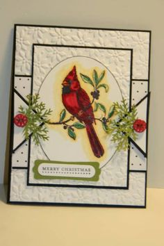 SC253 A Cardinal Christmas Card by sn0wflakes - Cards and Paper Crafts at Splitcoaststampers