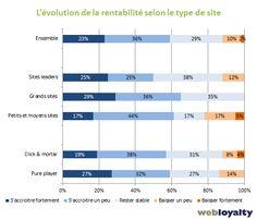 évolution de la rentabilité selon le type de site marchand #ecommerce #vad