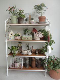 Moble ben decorat amb plantes
