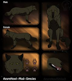Mud wolf species - AzureHowl by AzureHowlShilach.deviantart.com on @DeviantArt