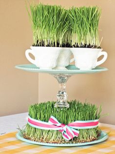 Wheat Grass Centerpiece tutorial! so cute!