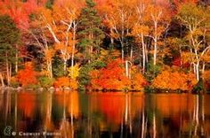 Vermont Fall Colors - Bing Images
