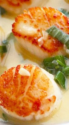Seared Scallops in White Wine Butter Sauce (mei fun recipes) Fish Recipes, Seafood Recipes, Cooking Recipes, Clam Recipes, Pureed Recipes, Recipies, Dinner Recipes, Healthy Recipes, Seafood Dinner