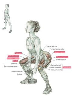 Goblet Squats are an awesome exercise for beginners to strength training. They work the glutes, quads and hamstrings! #gobletsquats #fitness