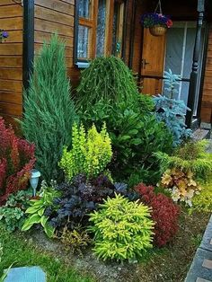 42 Awesome Backyard Landscaping Design Ideas To Try This Fall 42 Awesome Backyard Landscaping Design Ideas To Try This Fall,Garten Cool 42 Awesome Backyard Landscaping Design Ideas To Try This Fall. Evergreen Landscape, Evergreen Garden, Evergreen Trees, Garden Shrubs, Shade Garden, Garden Bugs, Garden Cottage, Front Yard Landscaping, Landscaping Ideas
