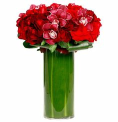 Red Radiance - Floral Art