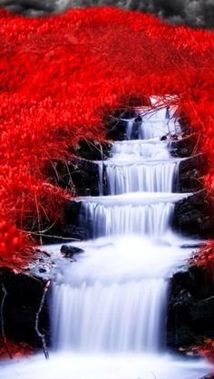 Waterfall, so beautiful. That is what NATURE is about, beauty, health, excellent disposition everyday. Live a life pain free. Live happy and using every second with PLEASURE! Beautiful Nature Wallpaper, Beautiful Landscapes, Beautiful Flowers, Beautiful Places, Beautiful Pictures, Photo Trop Belle, Landscape Photography, Nature Photography, Image Nature
