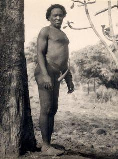 North Nigeria, Kaleri adult male standing outdoors. Male wearing penis-gourd. Rural setting, tree-trunk at left. Medium: Gelatin silver print.