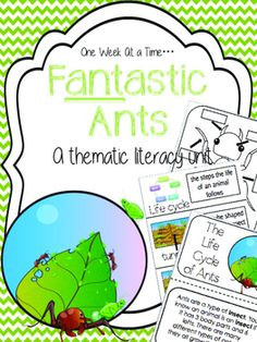 This is a week long unit study on ants. Students will discover information about ant body parts and living habits. There is even an observation journal for students to use with an ant farm. Packet include: ***- suggested weekly plan- KWL chart labels- words to watch (vocabulary cards) in color - words to watch (vocabulary cards) in black and white- vocabulary in context read aloud or student reader- differentiated vocabulary in context independent practice (2 levels)- Ant-atomy reader…