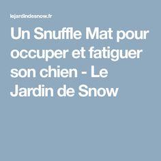 Un Snuffle Mat pour occuper et fatiguer son chien - Le Jardin de Snow