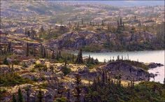 Klondike Highway - Landscape - Alaska | Flickr - Photo Sharing!
