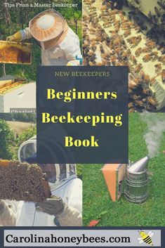 BEEKEEPER GIFTS   Bee Themed Gifts That Are Sweet As Honey | Beekeeping,  Bee Keeping And Raising Bees