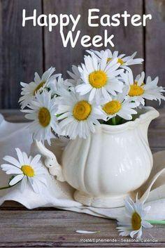 June Flower, My Flower, Flower Vases, Flower Art, Beautiful Bouquet Of Flowers, Happy Flowers, Pretty Flowers, Sunflowers And Daisies, Daisy Love