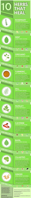 10 healing herbs infographic