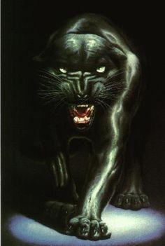 Black Panther Fanart - black-panthers Fan Art