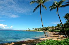 Kapalua Bay - great snorkelling for beginners here and perfect place to spot a turtle