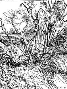 Image result for arthur rackham pen and ink woman