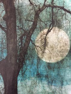 Jamie Heiden, Holmen, WI An artist who specializes in working with multiple photographic layers.