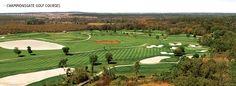 Champions Gate Golf Resort - Gendron Golf