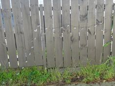 Hanging Solar lights on my fence.