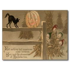 Black Cat Jack O Lantern Pumpkin Haystack Post Cards
