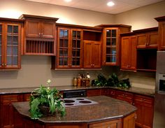 Kitchen cabinet possibility....
