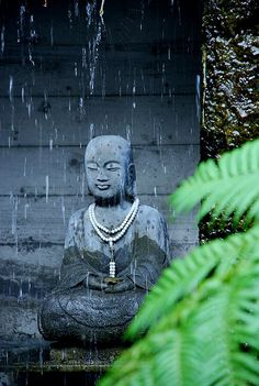 d-vn:  Buddha by s.a.r. on Flickr.