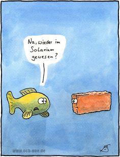 Wenn Fische die Farbe wechseln sind sie... genau fisch ...