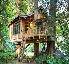 Treehouse Point located near Seattle, Washington is the right place that offers various trrehouses for celebrating special occasions in wilderness...  #treehouse #privatecamping
