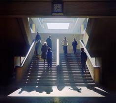 Fan Ho ~ Light and Shadow