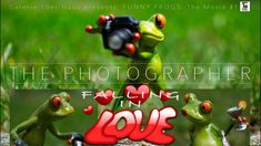 Funny Frogs - The Photographer #1 - Falling in Love Funny Frogs, Falling In Love, Presents, Movies, Movie, Great Love, Gifts, House, Films