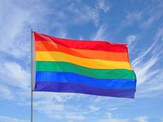 Lesbian Love, Lgbtq Flags, Gay Aesthetic, Rainbow Pride, Rainbow Flags, Gay Pride, Pride Flag, E Bay, Bunt
