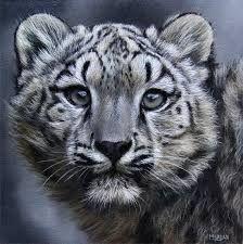 Image result for wildlife art
