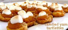 cupcakes, pie crusts, fans, diets, candi yam, yam tartlett, turkey dinners, potato, cupcak turkeydinn